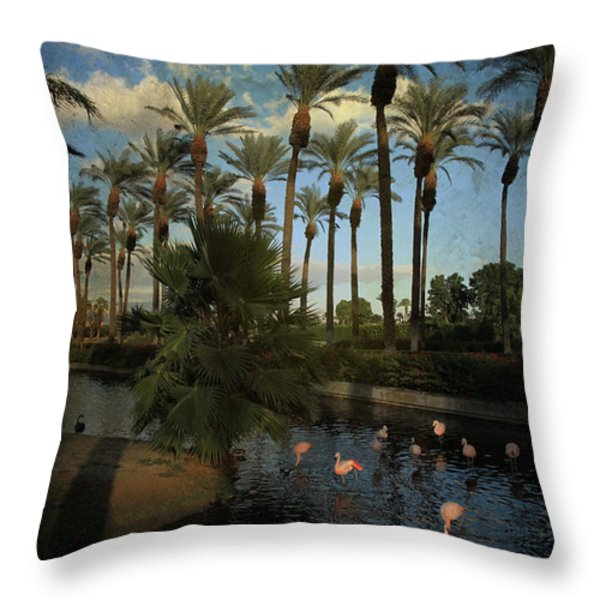 Savoring The Last Light Throw Pillow by Laurie Search