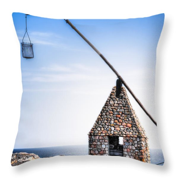 Scandinavian Vippefyr Throw Pillow by Erik Brede