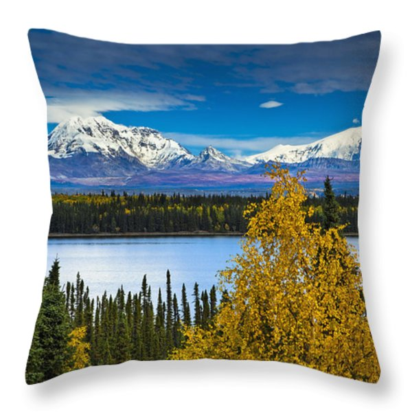 Scenic View Of Mt. Sanford L And Mt Throw Pillow by Sunny Awazuhara- Reed