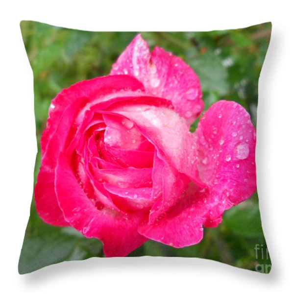 Scented Rose Throw Pillow by Ramona Matei
