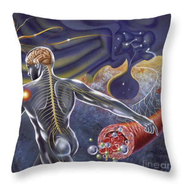 Schematic Of The Hypothalamus Receiving Throw Pillow by TriFocal Communications