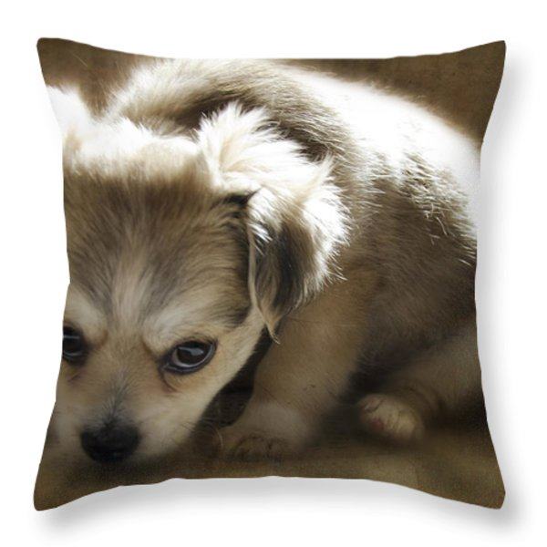 Scolded Throw Pillow by Lisa Knechtel