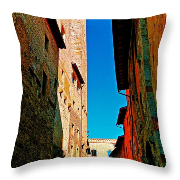Scorched By The Sun Throw Pillow by Ira Shander
