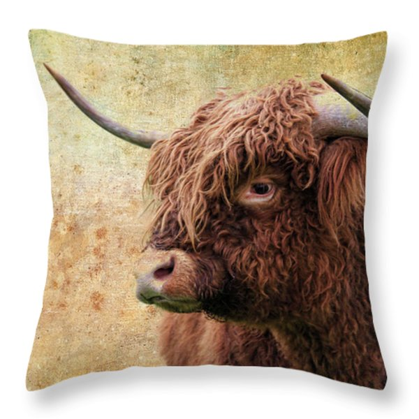 Scottish Highland Steer Throw Pillow by Steve McKinzie