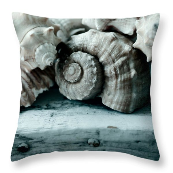 Sea Gifts Throw Pillow by Bonnie Bruno