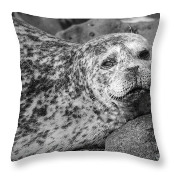 Sea Lion Stare In Monochrome Throw Pillow by Darleen Stry