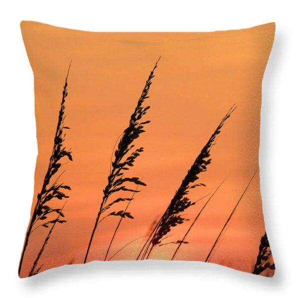 Sea Oat Sunset Throw Pillow by JC Findley