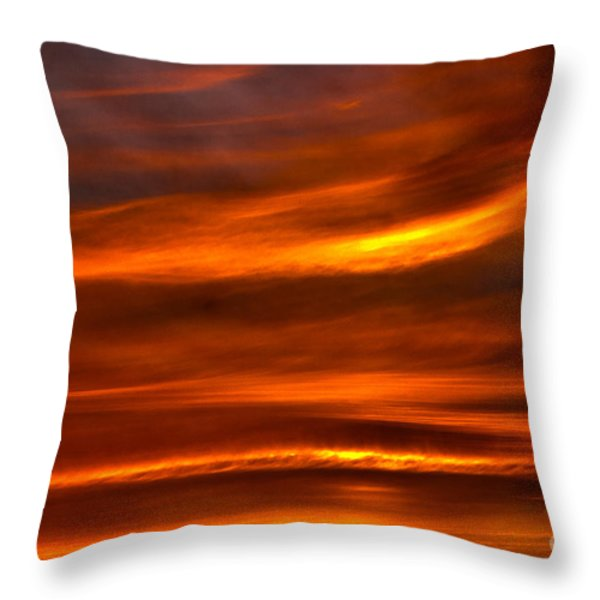 Sea of Sun Throw Pillow by Alan Look
