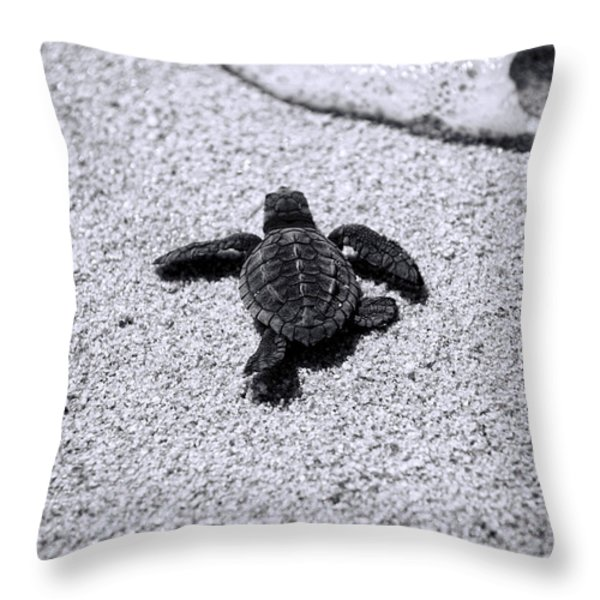Sea Turtle Throw Pillow by Sebastian Musial