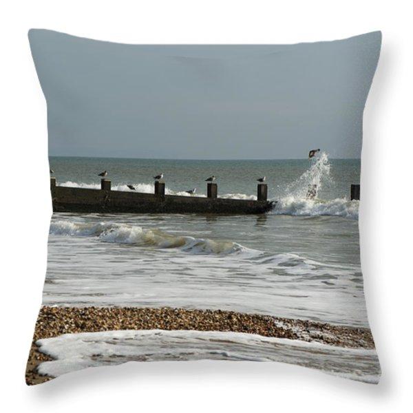 Seagull Groyne Throw Pillow by Anne Gilbert