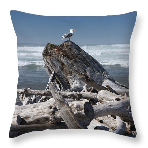 Seagull On Oregon Coast Throw Pillow by Peter French