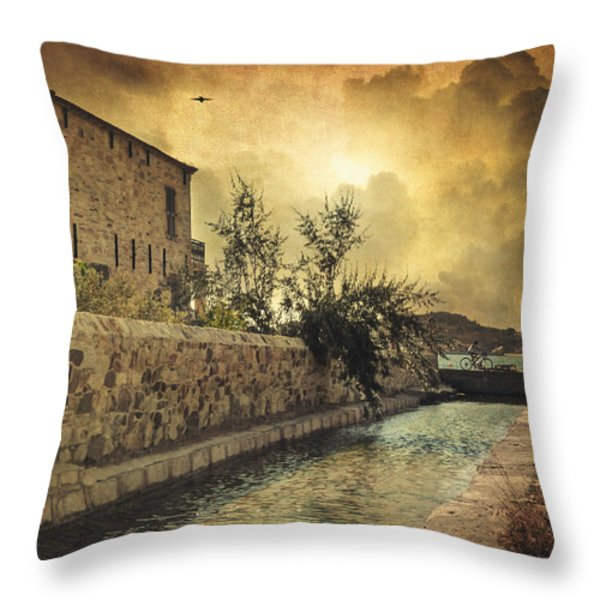 Searching The Past Throw Pillow by Taylan Soyturk