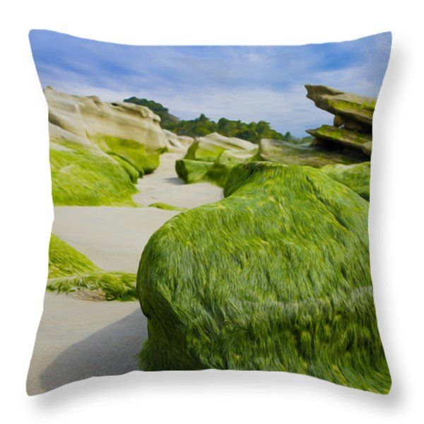 Seascape Throw Pillow by Aged Pixel
