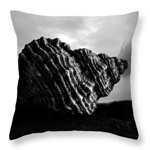 Seashell Without the Sea 2 Throw Pillow by Bob Orsillo
