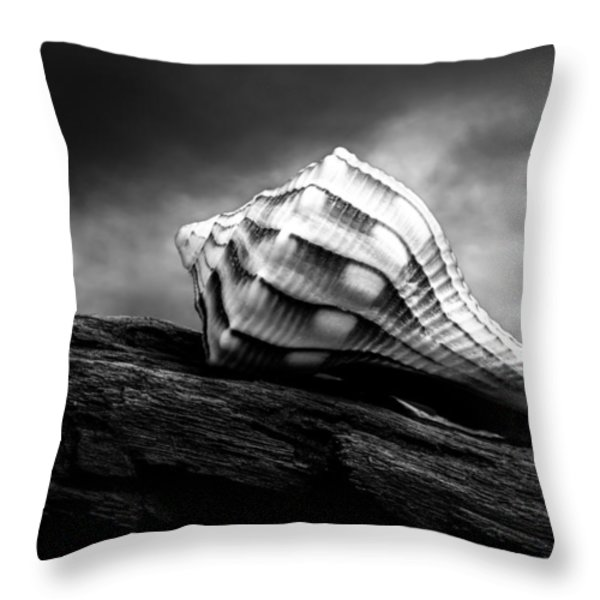 Seashell Without The Sea Throw Pillow by Bob Orsillo