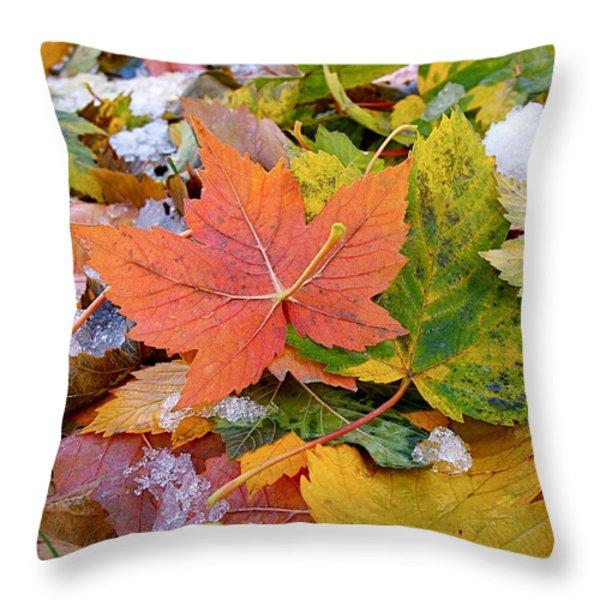 Seasonal Mix Throw Pillow by Rona Black