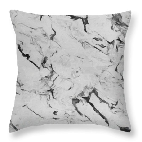 Seasonless Throw Pillow by Lourry Legarde