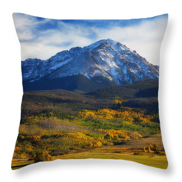 Seasons Change Throw Pillow by Darren  White
