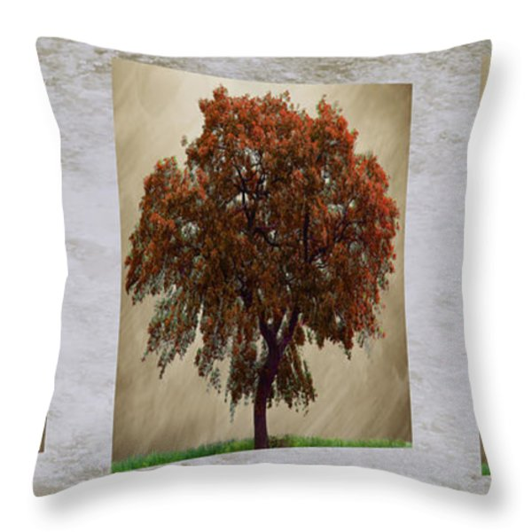 Seasons Triptych Throw Pillow by Cheryl Young
