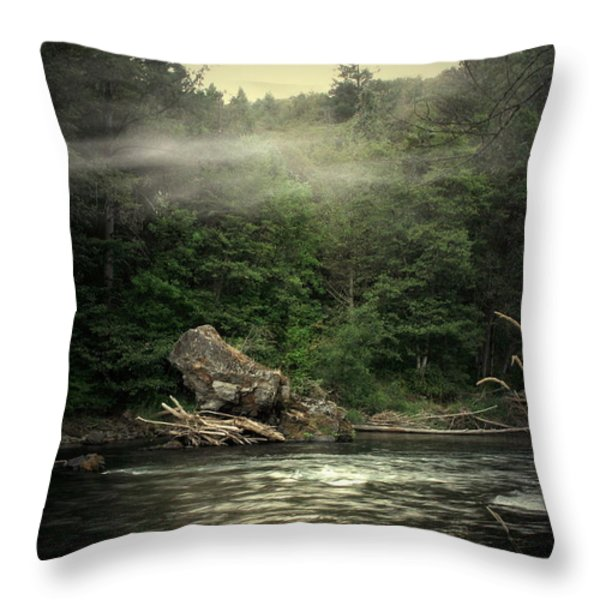 Seclusion On The Trinity Throw Pillow by Joyce Dickens