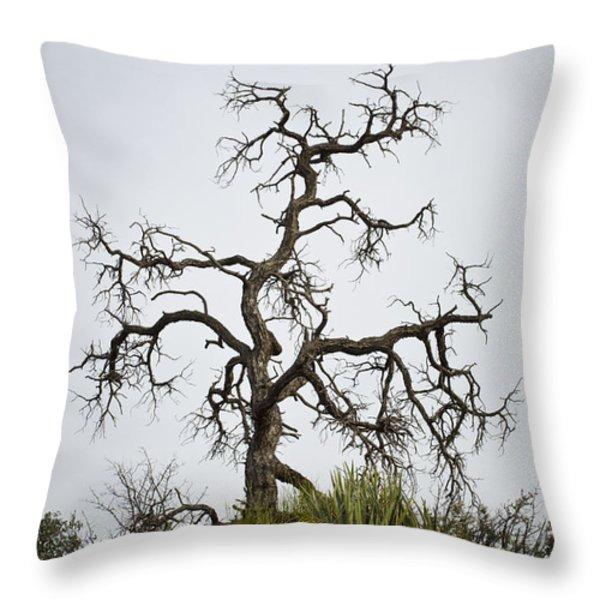 Sedona Landscape Vii Throw Pillow by David Gordon