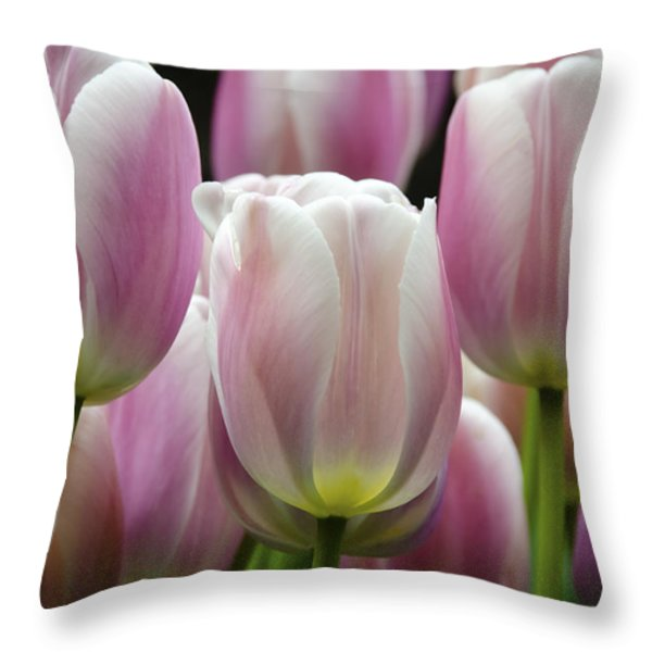 Seeing Pink Throw Pillow by Penny Lisowski