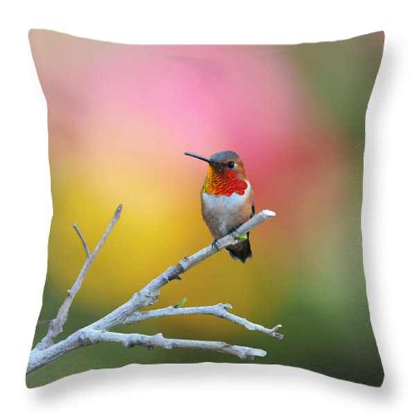 Seeing Red Throw Pillow by Lynn Bauer