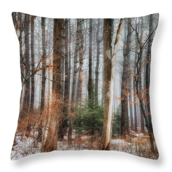 Seeing the Trees Thru the Forest Throw Pillow by Bill  Wakeley