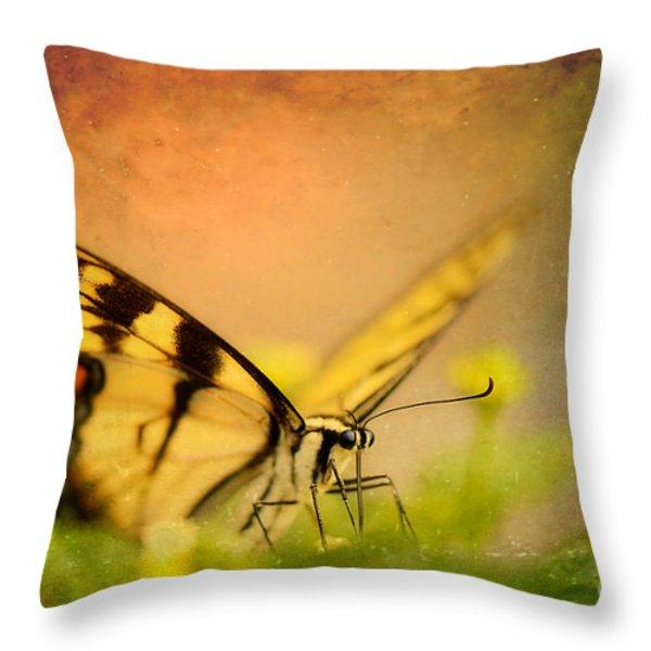 Seeking Sweetness 3 Throw Pillow by Lois Bryan