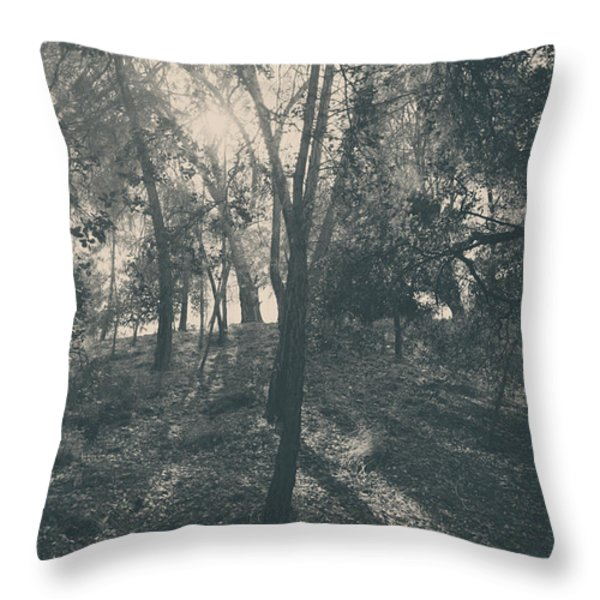 Sending Light and Warmth to You Throw Pillow by Laurie Search