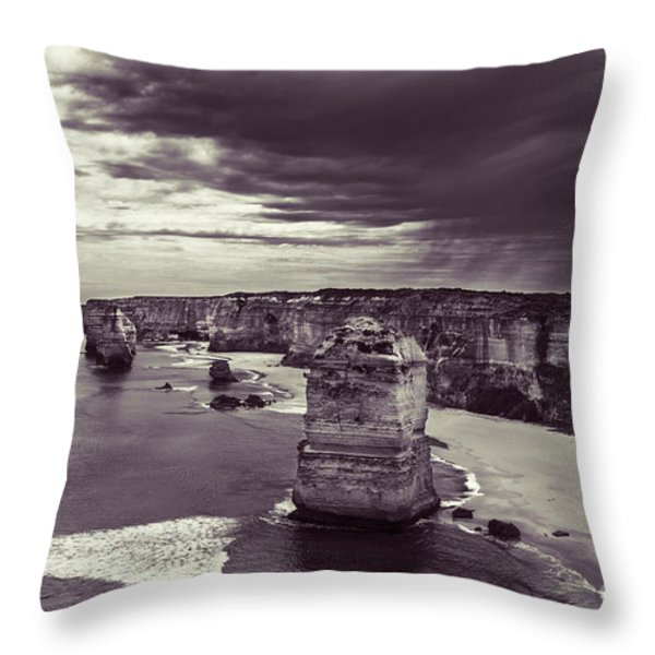 Sentinals Throw Pillow by Andrew Paranavitana