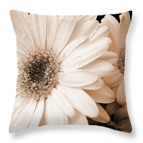Sepia Gerber Daisy Flowers Throw Pillow by Jennie Marie Schell