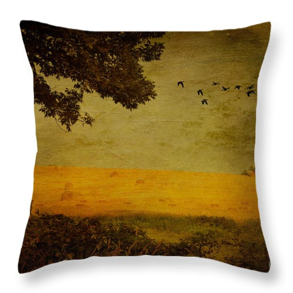 September Throw Pillow by Lois Bryan