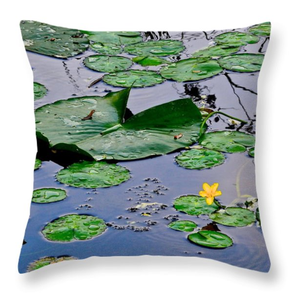 Serene To The Extreme Throw Pillow by Frozen in Time Fine Art Photography
