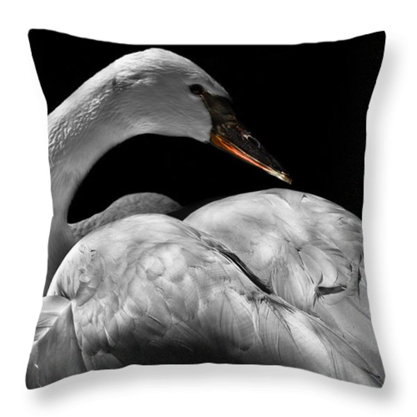 Serenity Throw Pillow by Debra and Dave Vanderlaan