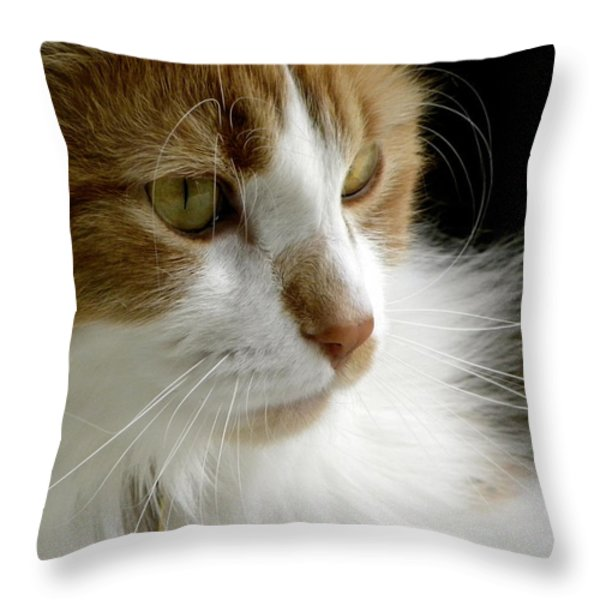 Serious Gato 1 Throw Pillow by Julie Palencia
