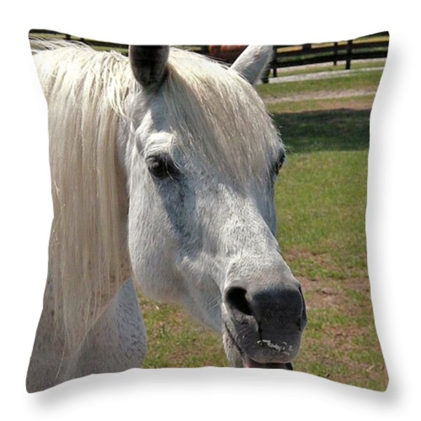 Seriously? Throw Pillow by Kim Bemis