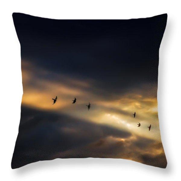 Seven Bird Vision Throw Pillow by Bob Orsillo