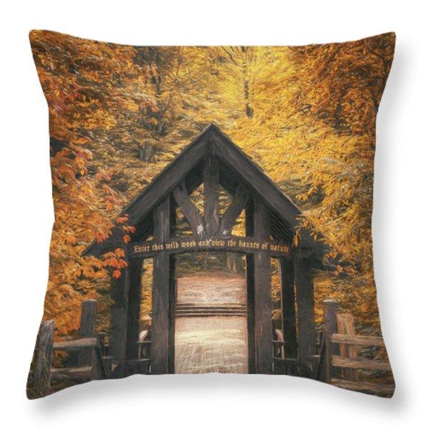 Seven Bridges Trail Head Throw Pillow by Scott Norris