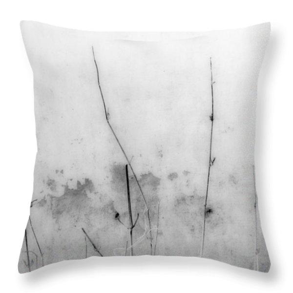 Shades Of Grey Throw Pillow by Prakash Ghai