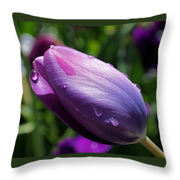 Shades Of Purple Throw Pillow by Rona Black