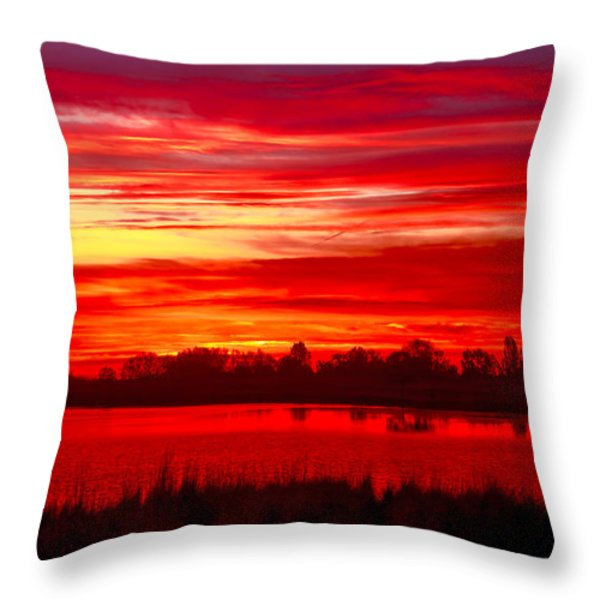 Shades Of Red Throw Pillow by Robert Bales