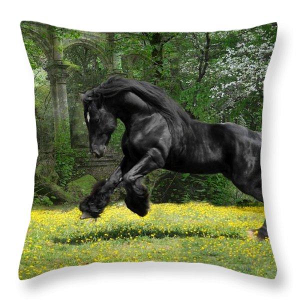 Shadow Liberty Throw Pillow by Fran J Scott