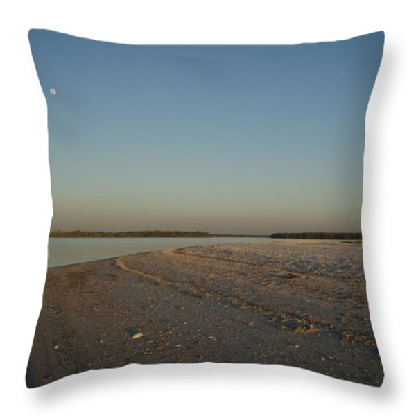Shadow Moon Throw Pillow by Robert Nickologianis