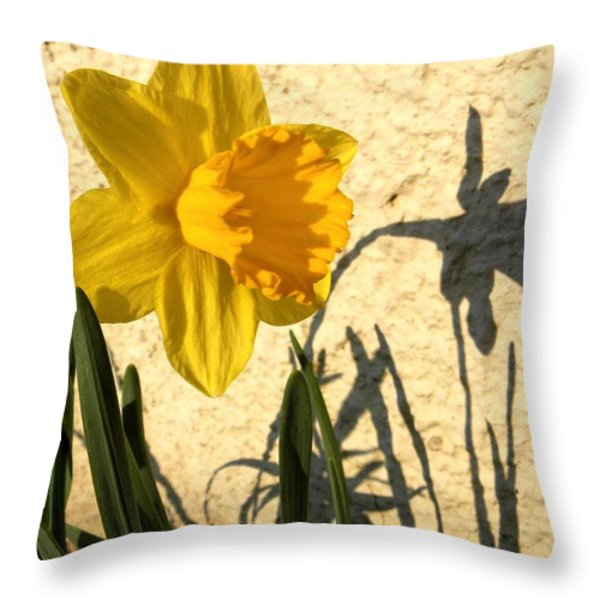 Shadowing Me Throw Pillow by Chris Berry