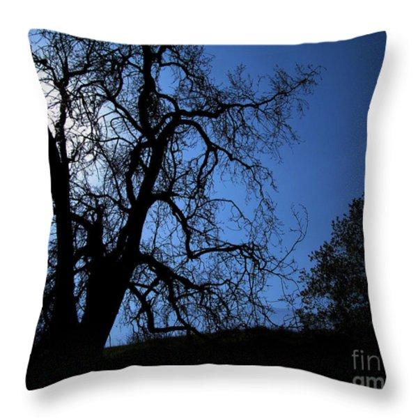 Shadowlands 1 Throw Pillow by Bedros Awak