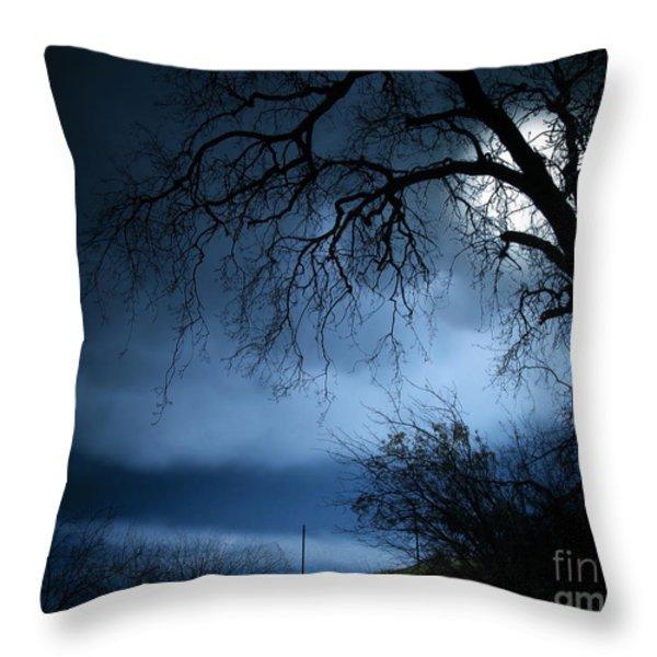 Shadowlands 3 Throw Pillow by Bedros Awak