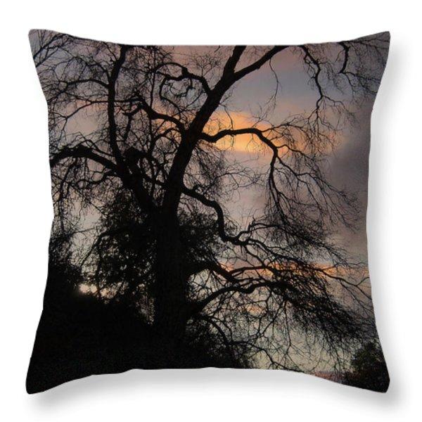 Shadowlands 5 Throw Pillow by Bedros Awak