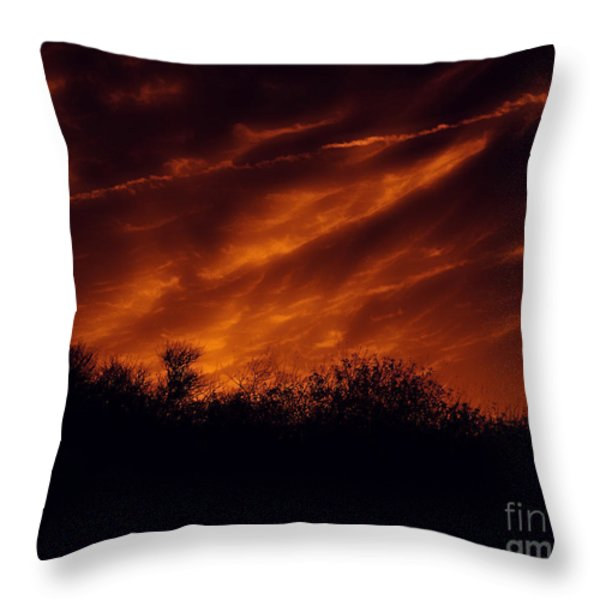 Shadowlands 7 Throw Pillow by Bedros Awak