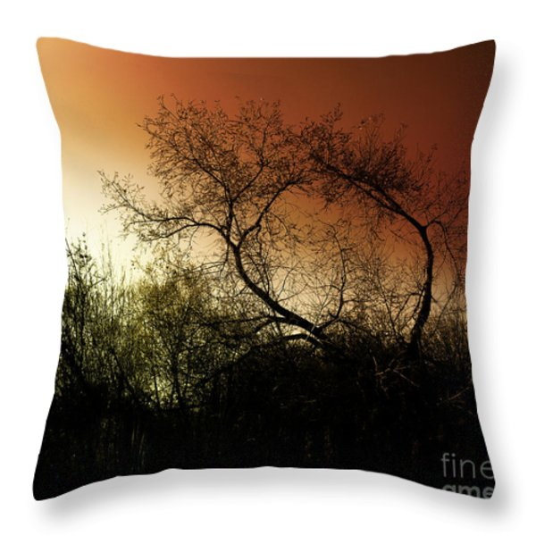 Shadowlands 9 Throw Pillow by Bedros Awak